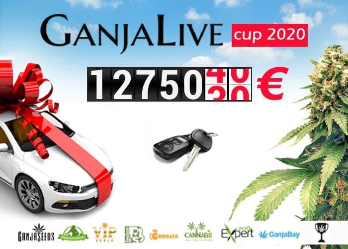 ავტომობილი გროურეპორტისთვის - GanjaLive Cup შთამბეჭდავი პრიზით!